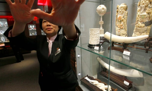 """A saleswoman tries to stop a photograph being taken of ivory items for sale in a department store in Hong Kong. Ivory traffickers operate under the cover of the """"legal"""" trade in China and Hong Kong."""