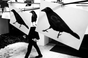"""The Crows"". Seoul, South Korea"