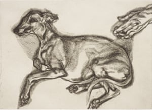 Pluto aged 12, 2000, etching by Lucian Freud.