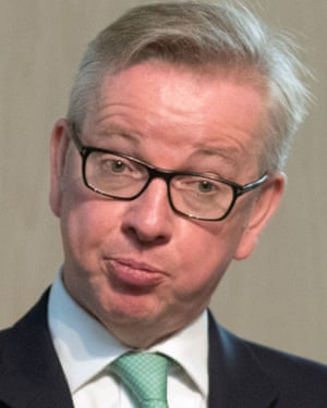 Hardline Brexiter Michael Gove and other leading Eurosceptics will not be happy if the UK ends up bound by existing EU regulations.