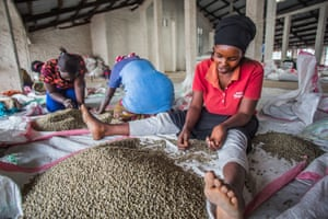 Members of the collective sort through beans grown on the island
