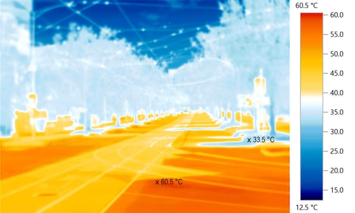 Urban heat islands: cooling things down with trees, green roads and