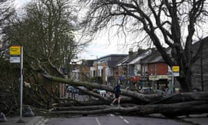 A fallen tree brought down by high winds from Storm Doris lies across a main road in Isleworth in London