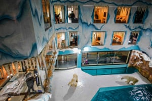 People look at polar bears inside an enclosure at a newly opened hotel, which allows guests views of the animals from rooms on the premises in Harbin, northeastern China's Heilongjiang province.