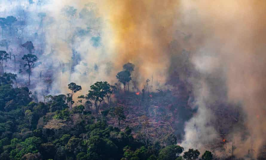 Fire burns in a section of the Amazon rain forest on 25 August 2019 near Porto Velho, Brazil.