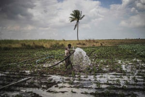 A farmer carries a hose to water his field in Tica, Mozambique where the Catholic organisation Caritas is providing counselling to farmers affected by the recent cyclones.