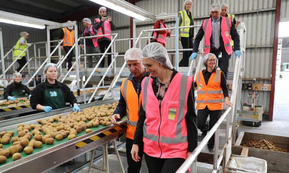 New Zealand's prime minister, Jacinda Ardern, visits a kiwi-packing plant