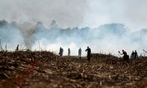 Sugar cane cutters work as smoke from burning cane rises behind them in the fields of the San Antonio sugar plantation in Chichigalpa, Nicaragua.