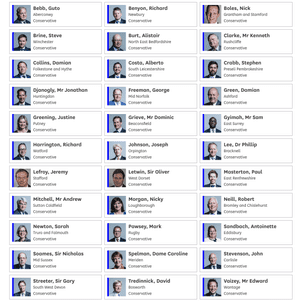 33 Tories who voted for business motion