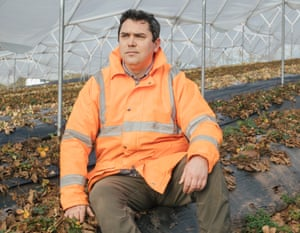 Cătălin Constandiș works at Haygrove – a berry, cherry and organic grower, with farms in the UK, South Africa and Portugal