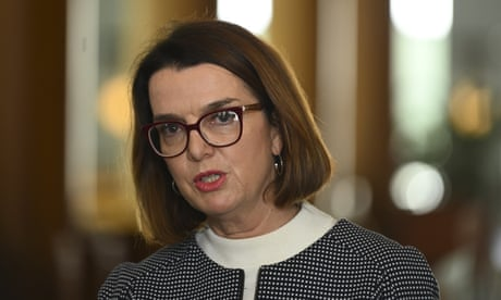 Raising Newstart would 'give drug dealers more money', social services minister says