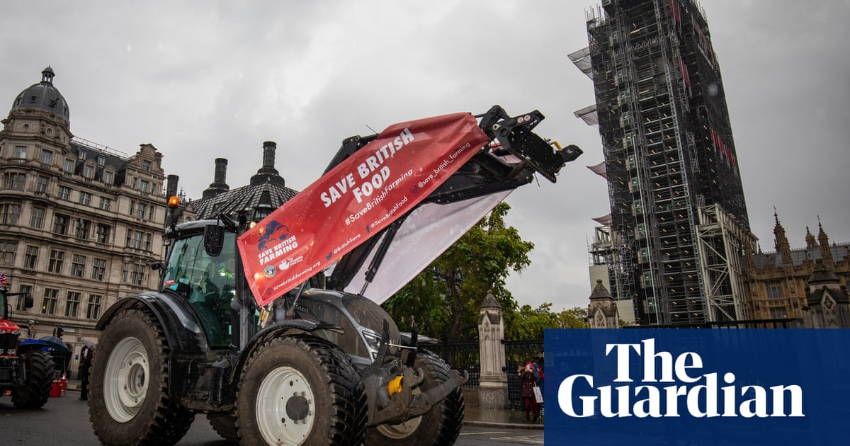 Farmers hope Lords will strengthen UK food safety standards
