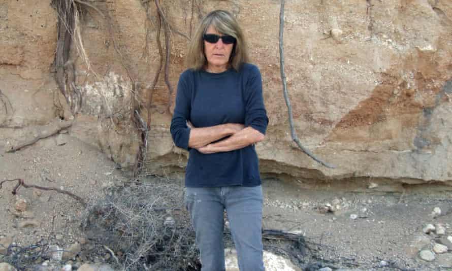 'Observational sensitivity and subtleness': Joy Williams in 2015