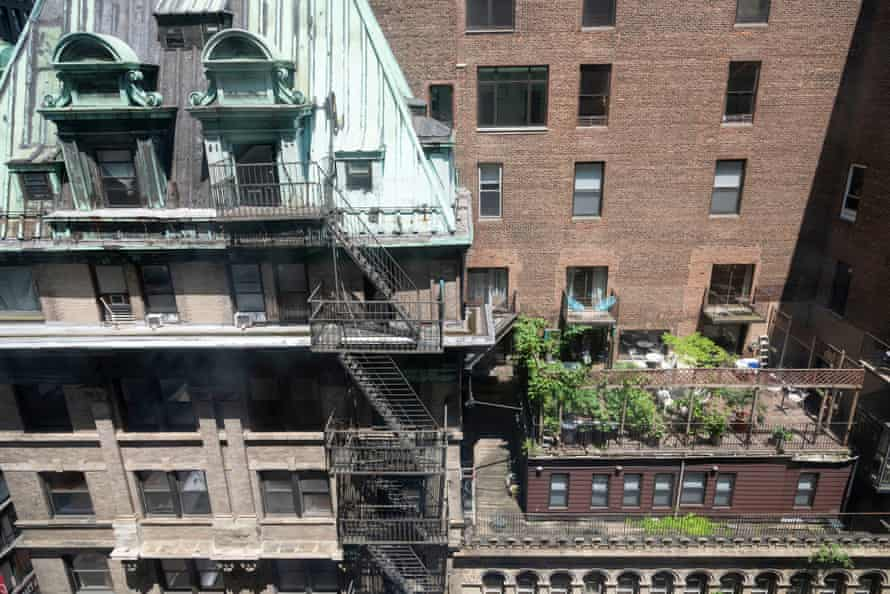 Distant view of the garden designed by Paul Greenberg on his terrace in New York