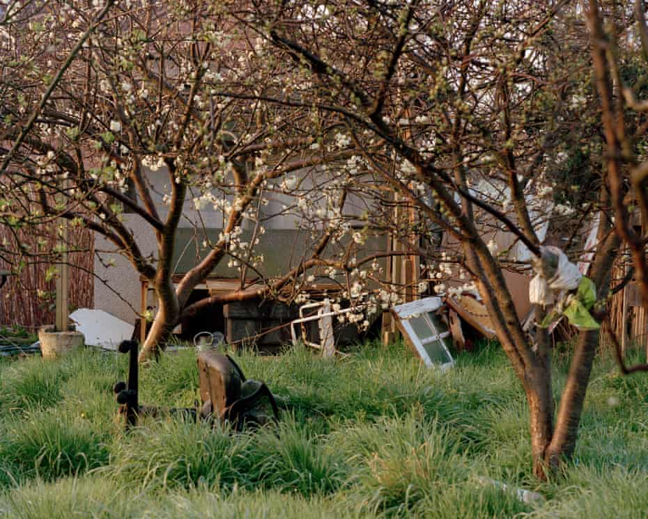 The overgrown plot of Rahim Mohammadi who was convicted of killing Lea. His makeshift shed remains locked with his possessions inside.