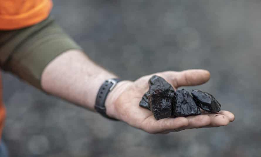 'The pandemic has shown just how vulnerable coal is to energy economics and market forces.'
