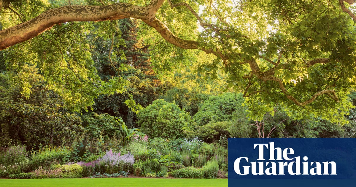 Redistributing wealth and royal green spaces