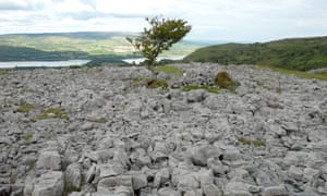 Burren Forest, Blacklion, Ireland