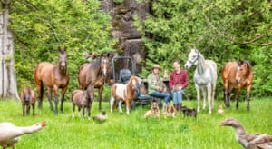Dogs, horses and geese are among this family's animals