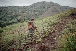 A young girl carrying a baby on her back walks in a cassava field