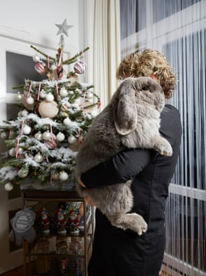 French lop rabbit Balou photographed by Isabella Rozendaal in Amsterdam.