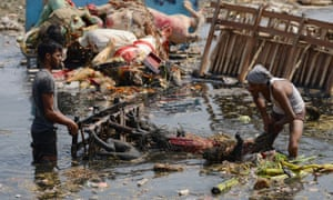 Indian workers remove religious offerings from the Yamuna river in Delhi.