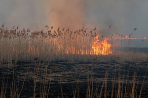 General view of a meadow in flames at the Biebrza National Park near Wrocen, north-east Poland