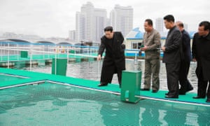 North Korean leader visiting a fish-breeding net ring set up on the River Taedong in central Pyongyang.
