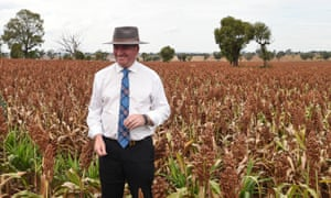 Barnaby Joyce inspecting the crop on a property on the outskirts of Merriwa during a day of campaigning in March.