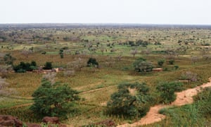 """Near Dogondoutchi, about 200 km east of Niamey. The setting is in a """"Dallol"""" which is a broad, sandy valley completely devoted to rainfed cropland."""