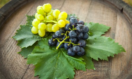 Using grapes in the brewing process is more popular than ever.