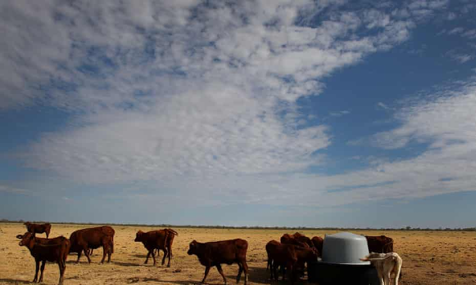 'The land without the family farm is meaningless, soulless, it goes to the core fabric of our nation,' Joyce said at the national press club this week.
