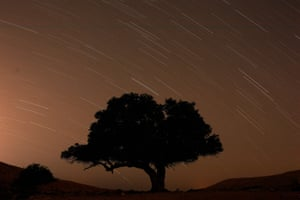 Mitzpe Ramon, Israel: A long exposure shows stars over a tree during the annual Perseid meteor shower