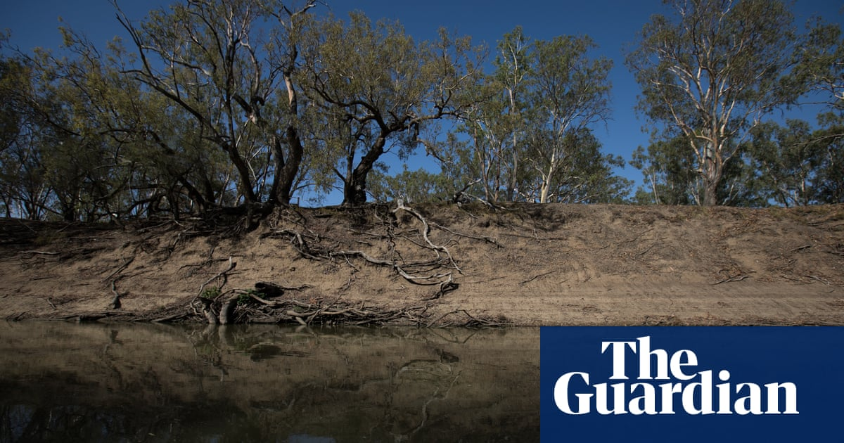 NSW cotton grower faces more charges over water pumped from Barwon river