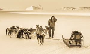 musher, sled and dogs on frozen landscape