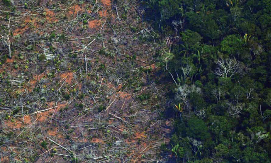 A deforested piece of land in the Amazon rainforest, about 65 km from Porto Velho, in the state of Rondonia, in northern Brazil.