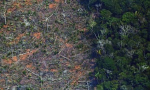 An aerial photo shows a deforested piece of land in the Amazon rainforest near Porto Velho, Brazil, on 23 August 2019.