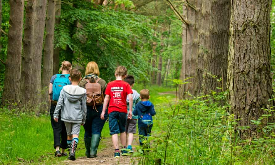 Mothers and children walking on forest trail in woodland
