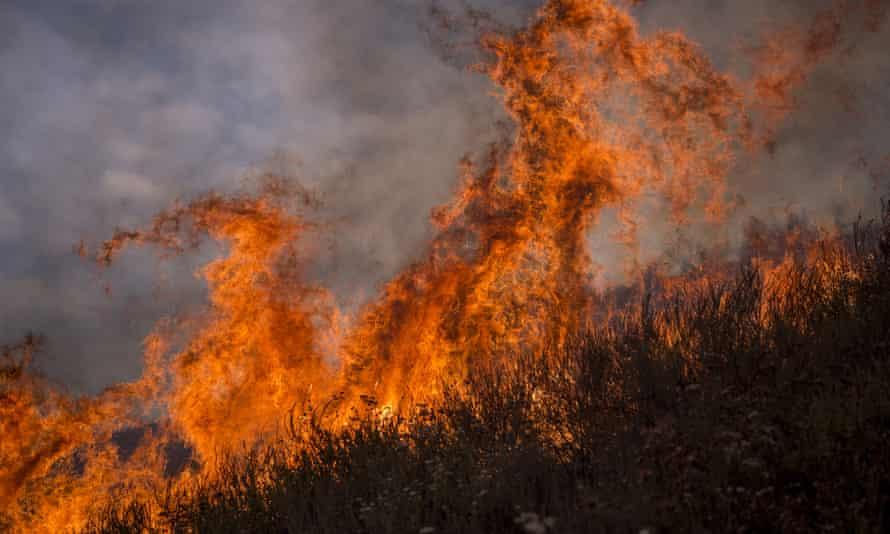 Flames rise from the La Tune Fire near Burbank, California in 2017.