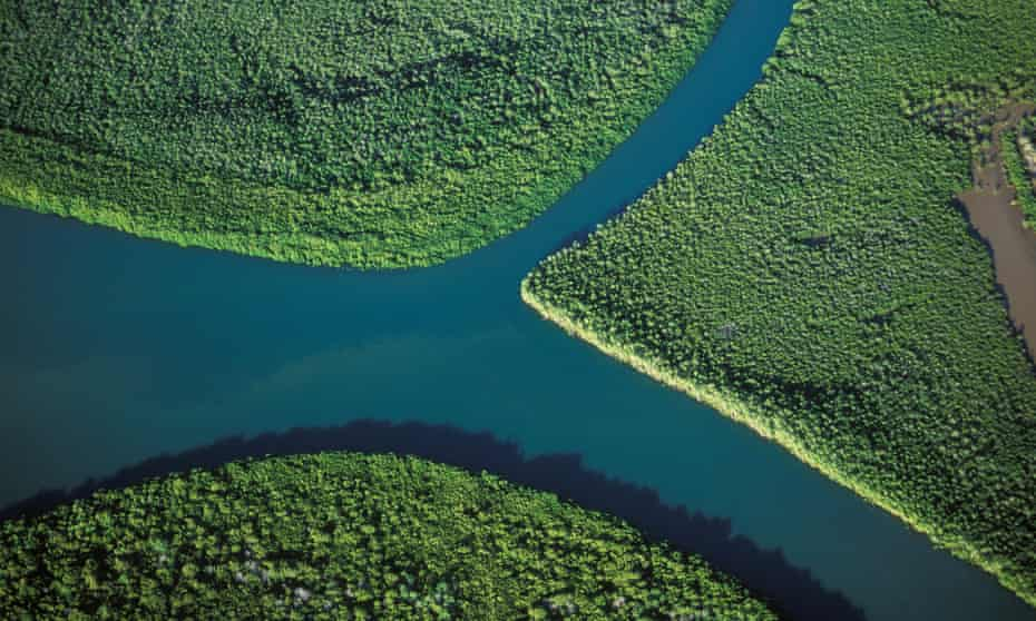 Aerial view of river and mangrove forest in Madagascar
