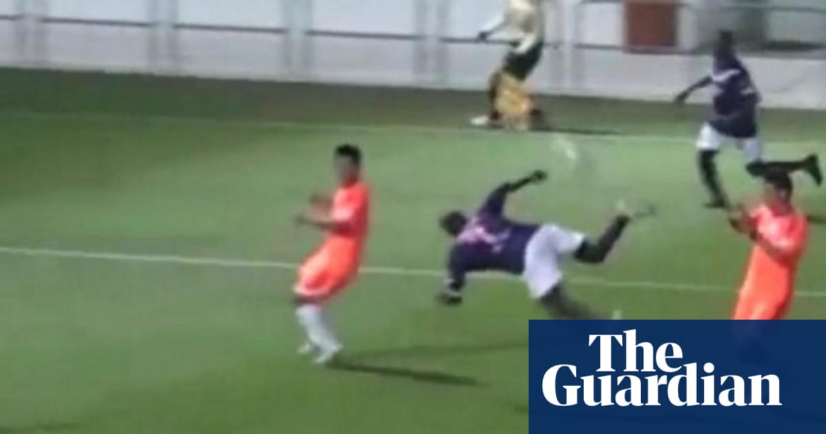 Stunning Own Goals Squirrels And Japanese Pizza Delivery