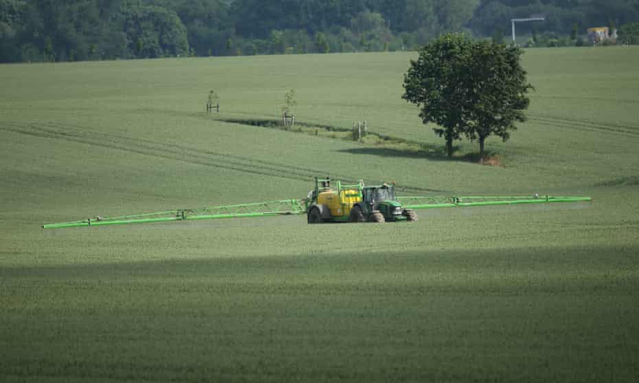 A tractor sprays pesticide on a wheatfield near Kleptow, Germany