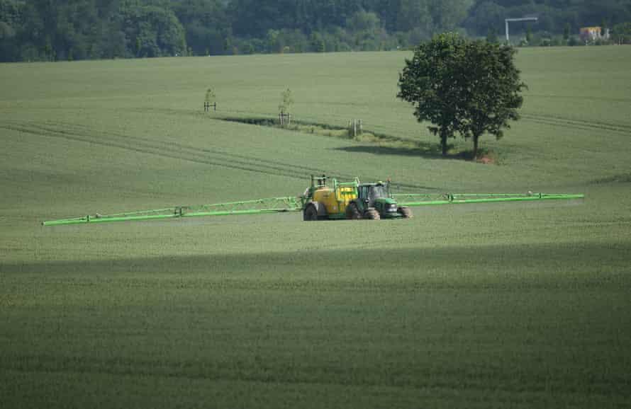 A tractor sprays pesticide onto a field of wheat near Kleptow, Germany