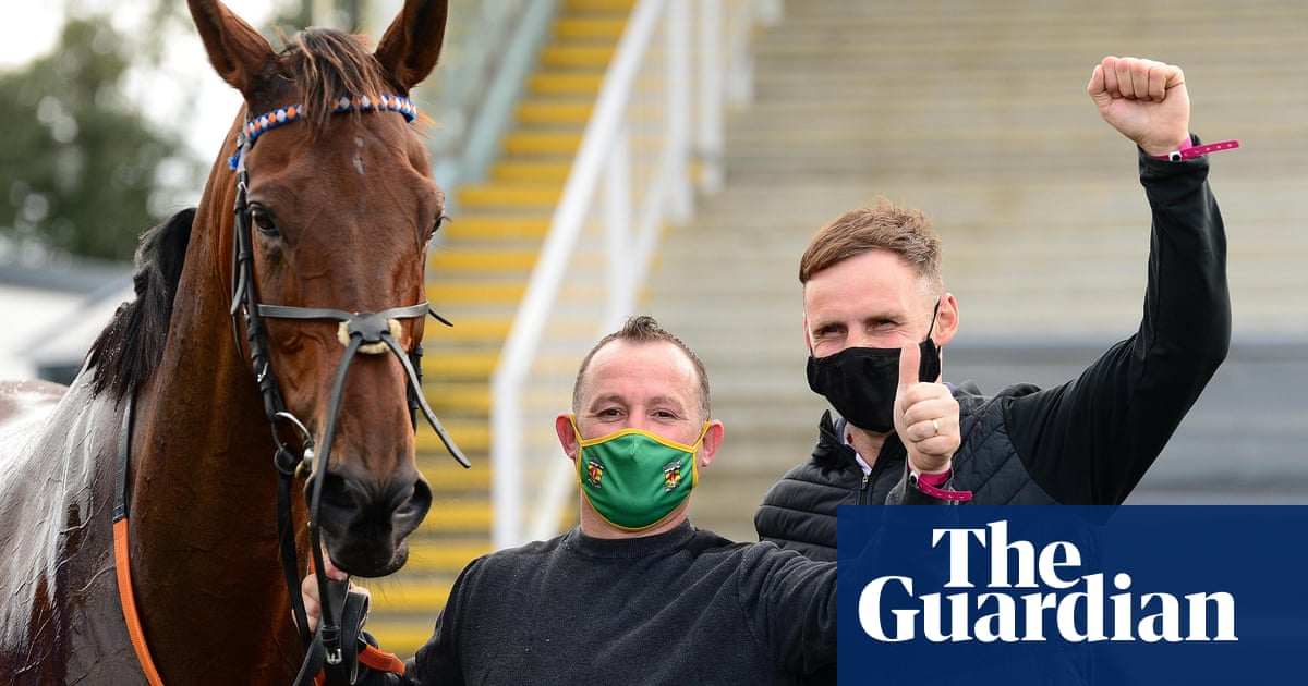 Talking Horses: Sting in tail for Dreal Deal team after amazing win - the guardian