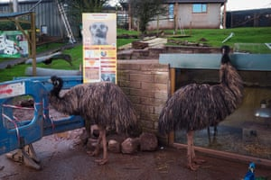 South Lakes Safari zoo in March 2017