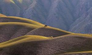 Horse riders on the Kalajun grassland in northwest China's Xinjiang Uygur Autonomous Region