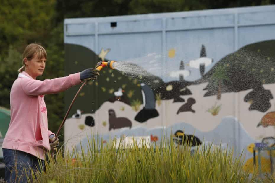 Yellow-eyed Penguin Trust plant nursery supervisor, Louise Ashton
