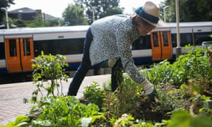 A community garden at a train station in London.