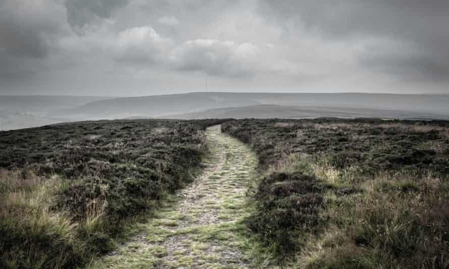 'A moorland walk goes horribly wrong' in The Fell by Sarah Moss.