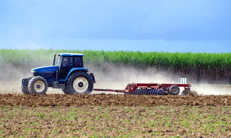 A tractor ploughs a field prior to planting sugarcane in Queensland.